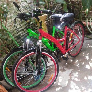 Lanterna e Shamira, nossas companheiras de pedal.