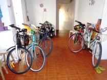 Roda de conversa De Bike na Cidade Sheryda Lopes (42)