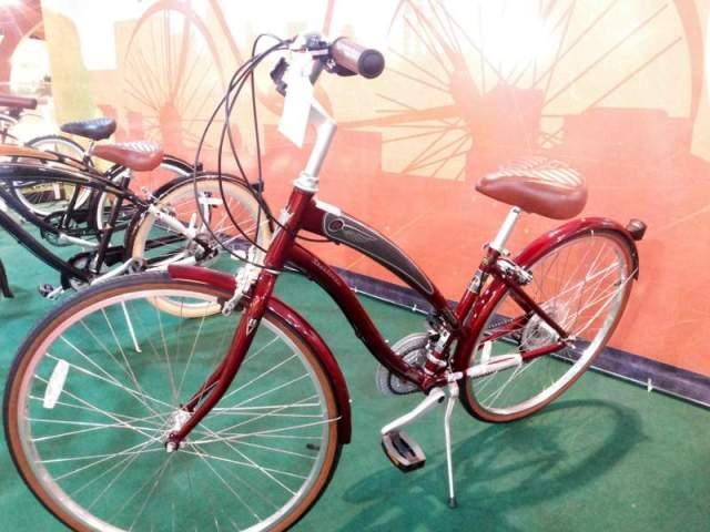 Bike Viva Blog De Bike na Cidade Sheryda Lopes (10)
