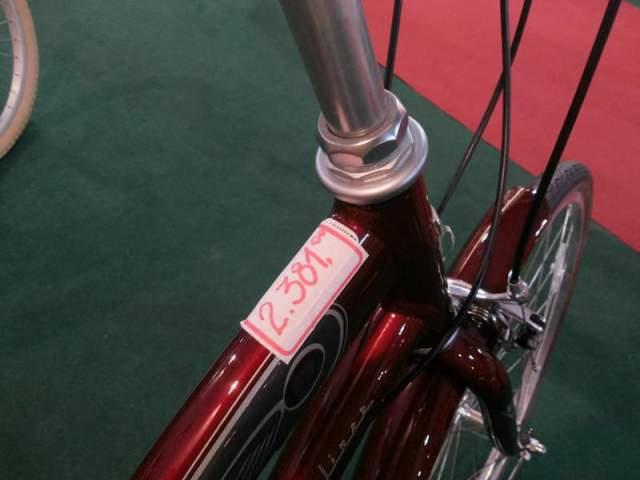 Bike Viva Blog De Bike na Cidade Sheryda Lopes (7)