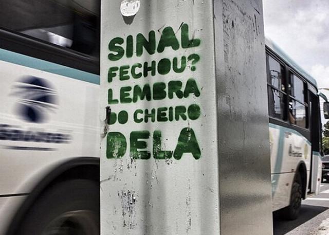 (Foto: Verdinha)